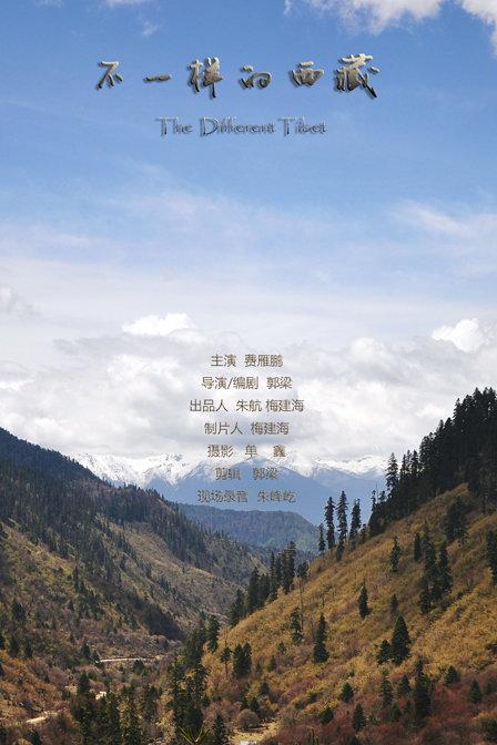 不一样的西藏