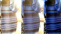 裙子的蓝黑与白金之争