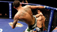 UFC五大轻量级对决