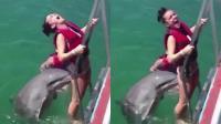 海豚撩妹姿势太辣眼睛!