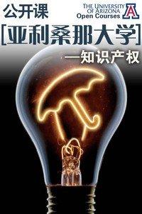 亚利桑那大学公开课:知识产权