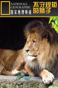 寰宇地理之不守规矩的狮子