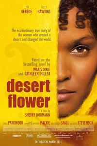 《沙漠之花》