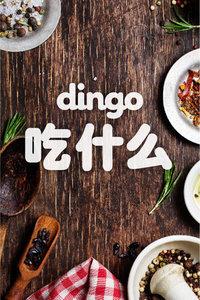 dingo 吃什么 2016