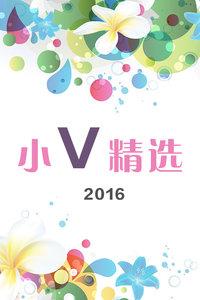小V精选 2016