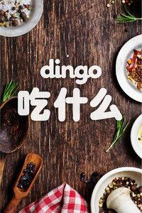 dingo 吃什么 2017