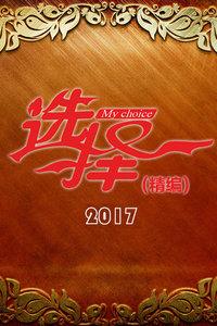 选择 精编 2017
