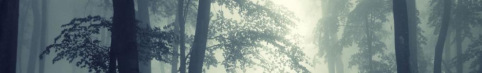 kikikiyomi banner