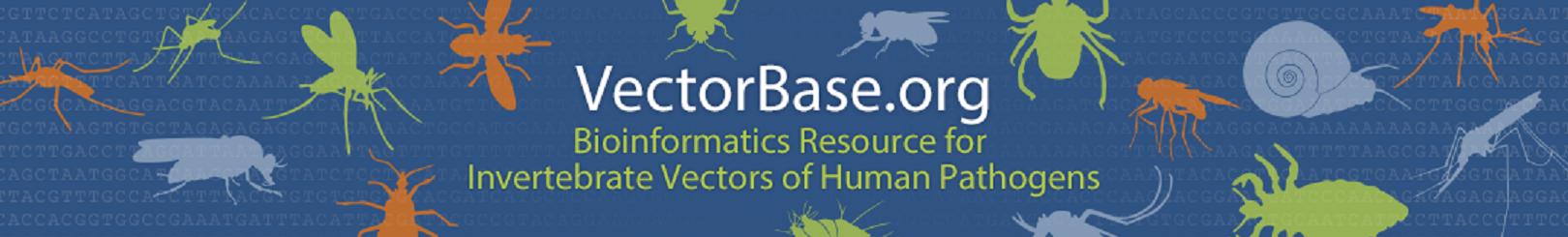 VectorBase banner