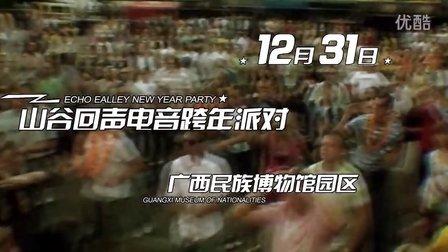 2012 山谷回声 电子音乐节 预告片