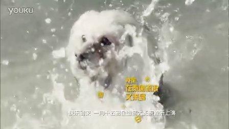 [剧透社]快乐到家狗狗配音版