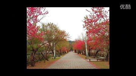 福建農林大學風景