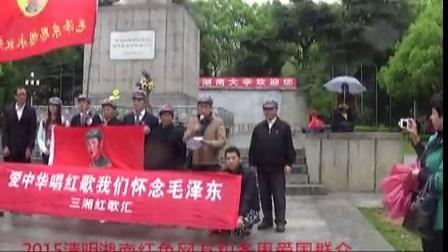 2015年清明湖南紅色網友和各界愛國人士紀念毛主席及先烈活動