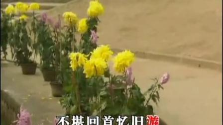 黃梅戲經典唱段100首之《牛郎織女》(果然喜從天上降)劉華、徐君