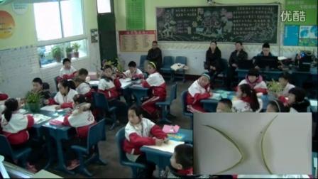 《植物寫生》第七屆中小學教學觀摩(人教版美術四年級,順慶實驗小學:劉玲)