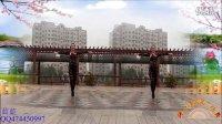 点击观看《厚重情谊舞蹈系列 好心情蓝蓝广场舞 兄弟喝个够 正背面 编舞青儿》