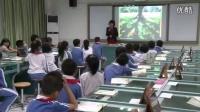 小學語文二年級《要是你在野外迷了路》教學視頻,深圳新媒體應用大賽獲獎視頻