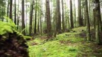 視頻: 山地車騎行:一直在路上[開眼Eyepetizer-160503期]