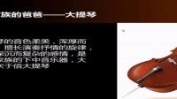 小學音樂《西洋提琴家族》微課視頻,深圳第三屆微課大賽視頻